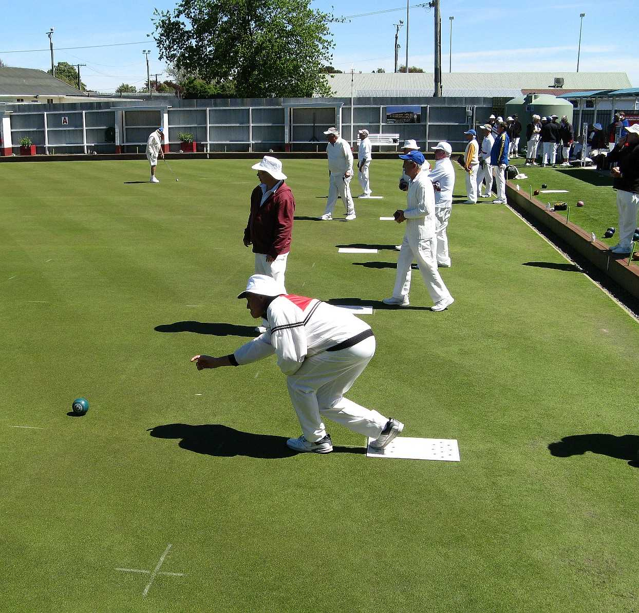 Saturday pm - Bowls on 2 greens: Ladies 7's & 2x4, Chatterton Cup, Rooster & social bowling !