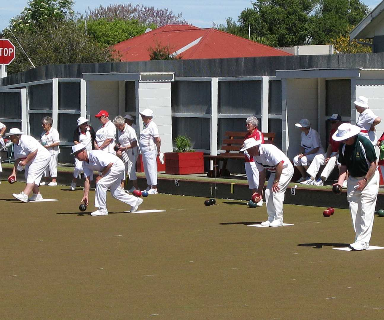 Saturday PM : Ladies 2 Fours Pennants, Chatterton Cup and Club Social Bowls.